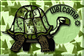 welcome turtle